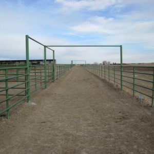 12-feet wide cattle alley