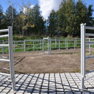 Proper grooving of the concrete is essential to prevent cattle from falling